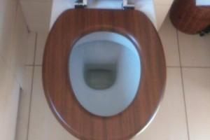 toaleta ekologicznie